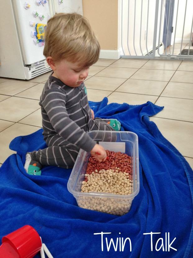 Dried Beans Sensory Bin